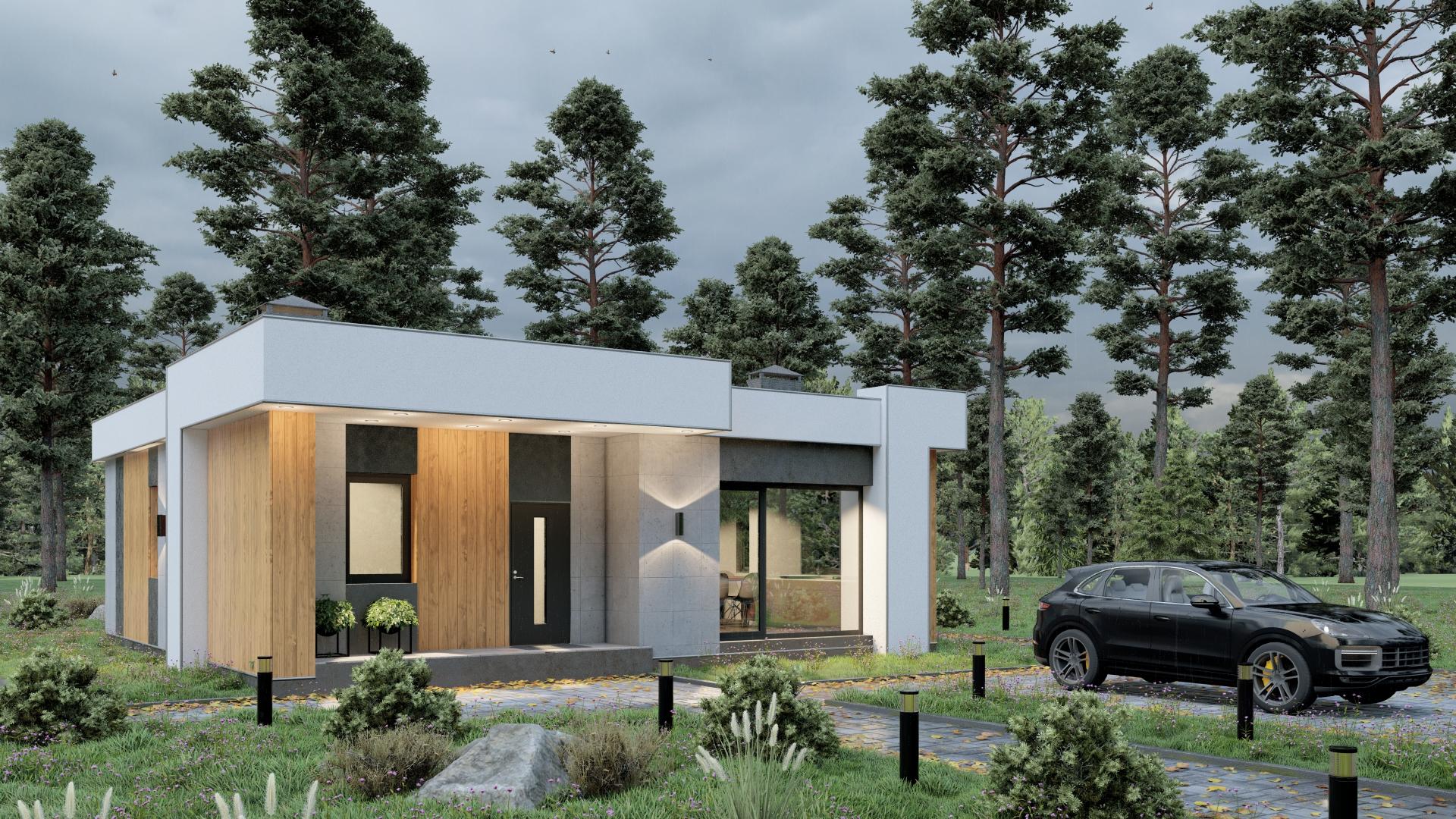 Проект дома D100D-S9